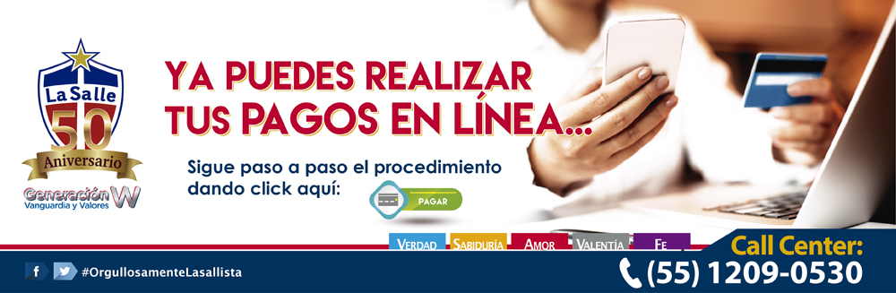 Manual pago en linea